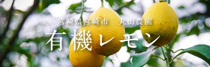 皮ごと使えるリスボンレモン