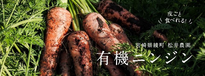 松井農園の有機ニンジン